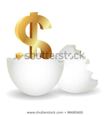 Quebrado ovo dourado dólares financeiro risco Foto stock © devon