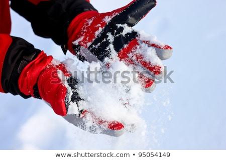 Red winter ski gloves Stock photo © BSANI