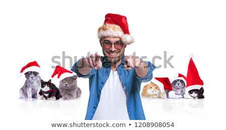 smiling man with santa cap points finger near christmas cats Stock photo © feedough