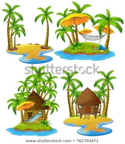 Cuatro cabaña coco árboles Foto stock © colematt