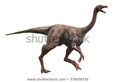 struthiomimus Stock photo © watcartoon