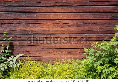 Wooden board on green bush Stock photo © colematt