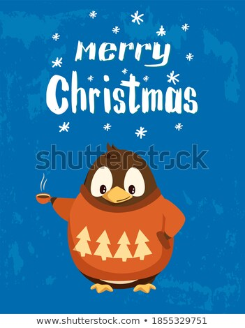 Penguin in Sweater with Hot Coffee Cup Stock photo © robuart