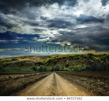 földút · fut · bokor · föld · út · kék - stock fotó © xbrchx