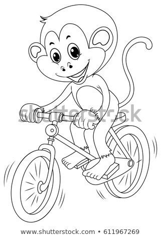 małpa · jazda · konna · rower · uśmiech · projektu · tle - zdjęcia stock © colematt