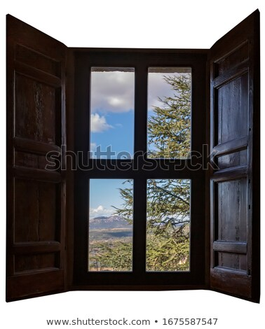 The wooden window overlooking of the forest in summer isolated on white background. Vector cartoon c Stock photo © Lady-Luck