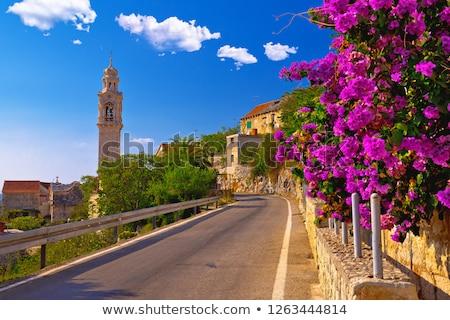 Falu sziget történelmi utca virágok kilátás Stock fotó © xbrchx