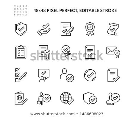 Passaporte vetor linha ícone isolado branco Foto stock © smoki
