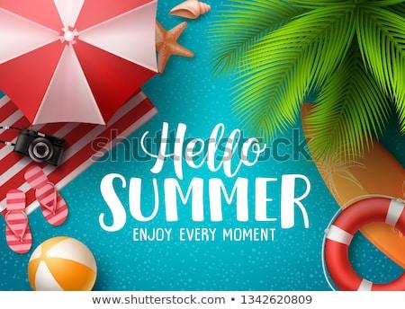 Vetor verão ilustração colorido bola de praia subaquático Foto stock © articular