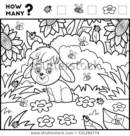 Viele Kaninchen pädagogisch Aufgabe Karikatur Illustration Stock foto © izakowski