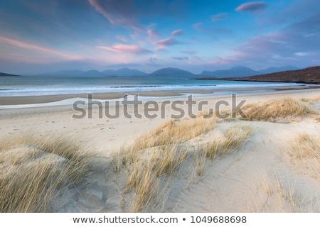 Praia cenário norte mar holandês Foto stock © prill