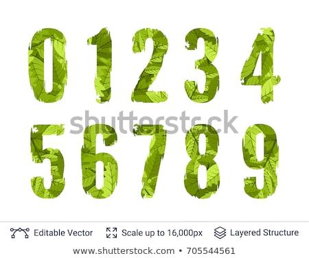 The Green bright leaf Stock photo © davisales
