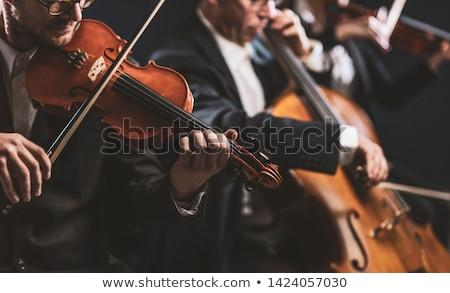 Hegedűművész csellista szépség lábak portré fehér Stock fotó © blanaru