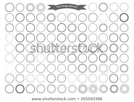 Abstrato círculo fronteira projeto beleza Foto stock © pathakdesigner