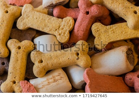 psa · suchar · beagle · kości · dla · psa · żywności - zdjęcia stock © melpomene