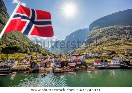 Foresta Norvegia ripida montagna natura mare Foto d'archivio © gewoldi