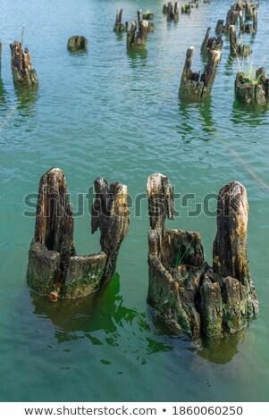 Kırık köprü dere su dere iz Stok fotoğraf © pancaketom