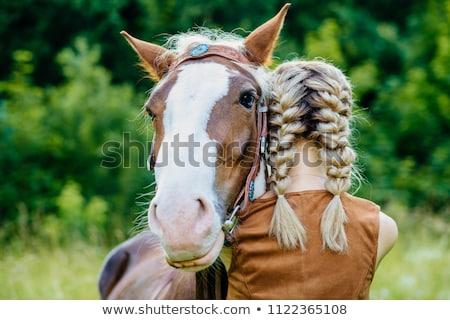 Surrealistic horse Stock photo © Elenarts