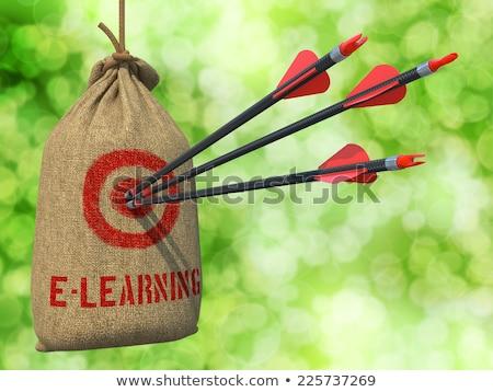 Online oktatás nyilak cél három piros akasztás Stock fotó © tashatuvango