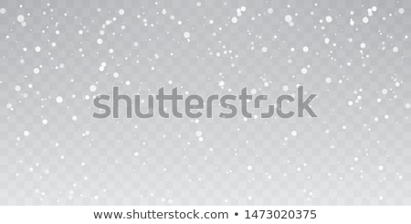 snowfall stock photo © mikhail_ulyannik