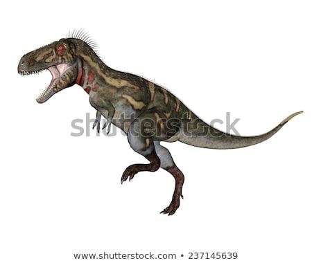 nanotyrannus dinosaur   3d render stock photo © mariephoto