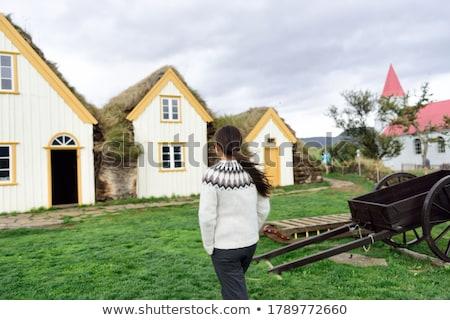 öreg · farm · Izland · északi · fű · fa - stock fotó © elxeneize