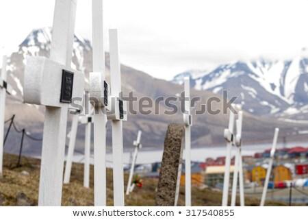 cemitério · branco · cruzes · grama · paisagem - foto stock © dinozzaver