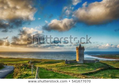 wild atlantic way castle stock photo © morrbyte