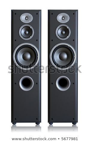 Acoustic system isolated vertically Stock photo © ozaiachin
