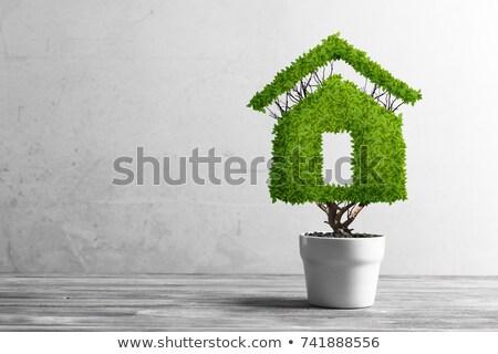 теплица иллюстрация образец текста дома бабочка Сток-фото © get4net