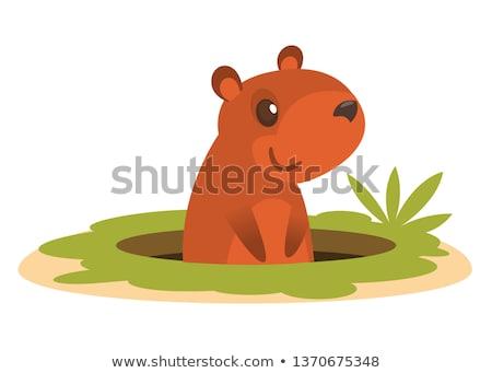 Smiling Marmot Cartoon Mascot Character Waving In Groundhog Day Stock photo © hittoon