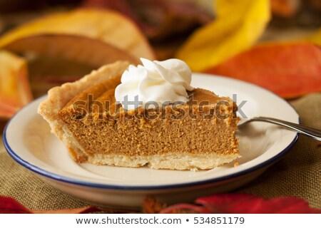 Pompoen taart slagroom geïsoleerd Blauw vector Stockfoto © TasiPas