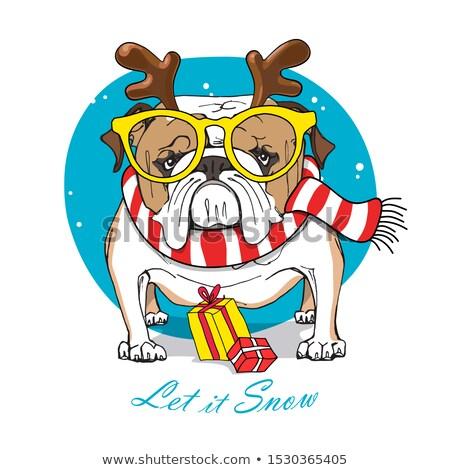 ストックフォト: 漫画 · 怒っ · 冬 · 子犬 · 見える · 犬