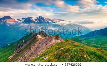Berg alpen zomer hemel boom Stockfoto © AndreyPopov
