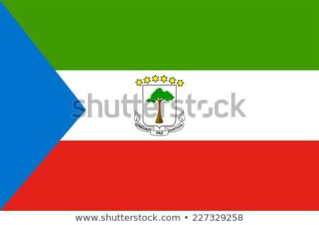 guinea flag, vector illustration on a white background Stock photo © butenkow