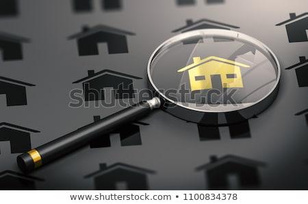 Házbelső ház trófea szarvas fej fal Stock fotó © nomadsoul1