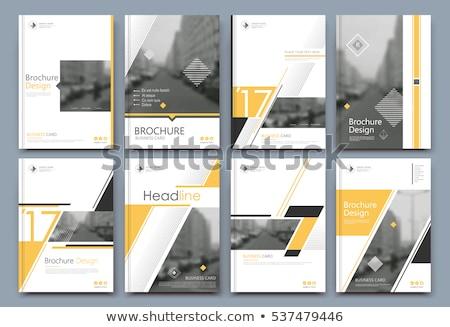 Elegáns citromsárga üzlet éves jelentés sablon Stock fotó © SArts