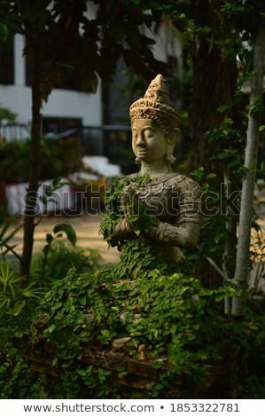 Buda bahçe heykel sarmaşıklar elma Stok fotoğraf © Sandralise