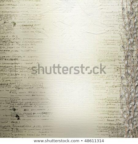 essay background checks