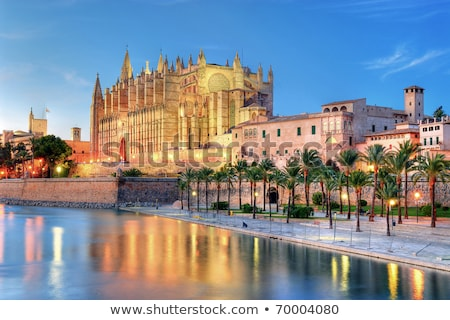 Cathedral of Majorca in Palma de Mallorca night Stock photo © lunamarina