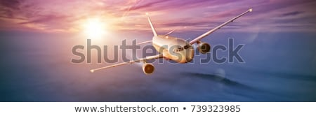 jet cruising in a sunset sky panoramic image stock photo © moses