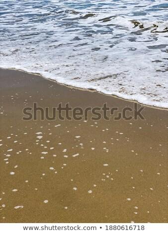 Köpüklü okyanus güneşli plaj doku manzara Stok fotoğraf © Frankljr