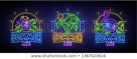 set summer time banners vector illustration stock photo © carodi