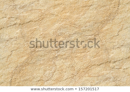 Kum taşlar az plaj kumu parlak Stok fotoğraf © calvste