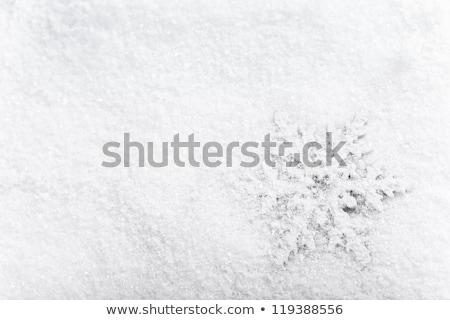 人工的な 雪 新鮮な 白 テクスチャ ストックフォト © frannyanne