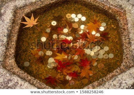 Wishing Well With Coins Top Stock photo © albund