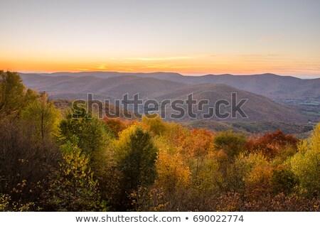 Massachusetts ősz panoráma festői kilátás lomb Stock fotó © ArenaCreative