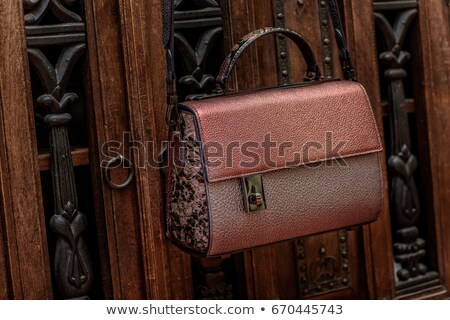 коричневый женщину сумку подлинный кожа изолированный Сток-фото © JohnKasawa