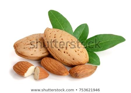 dolce · foglie · alimentare · verde · bianco - foto d'archivio © nito