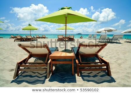 Gyönyörű dél strandszékek napernyő Miami üres Stock fotó © meinzahn